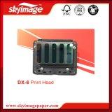 Water-Based Dx - 6 форсунки для головки/печати на струйных принтерах Epson