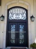 家のための卸し売り現代前部鉄のドアデザイン