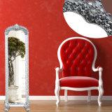 يرتدي مرآة, غرفة حمّام يجعل مرآة, فوق مرآة