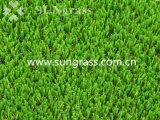 35мм синтетическим покрытием для сада или альбомная (SUNQ-HY00175)