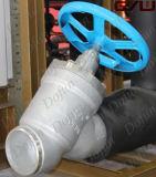 De Klep van het Gaspedaal van de Koeling van de ammoniak voor de Koude Zaal van de Ammoniak