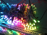 Programación de color LED RGB Luz de punto 12mm 5V para exteriores