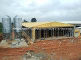 Semi-Closed дом цыпленка стальной структуры для слоя (цыпленок яичка)