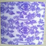 La couleur de plaque d'impression de fleur a enduit la bobine en acier de modèles