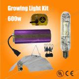 Wachsende helle Wasserkulturinstallationssätze der Lampen-600W Mh