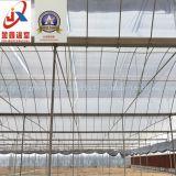 현대 농업을%s 다중 경간 아치 유형 필름 온실