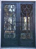 美しい粉の上塗を施してある出入口の錬鉄のドア