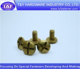 Boulon en laiton de toiture de qualité de constructeur de la Chine