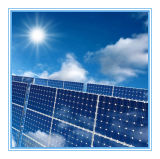 modul-Monopolyverkleidungs-China-Hersteller-Angebots-preiswerter Preis des Sonnenkollektor-2W~75W Solarfür Indien-Markt für Pakistan-Markt