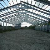 Construction à plusiers étages préfabriquée d'atelier de structure métallique (DG-SSW7)