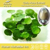 100% натуральные Asiaticoside Gotu Кольской извлечения (10%~ 90%) - на заводе GMP питания