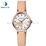 Wristwatch браслета нержавеющей стали Colorfull вахты повелительниц способа шикарный