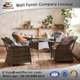 Furnir 좋은 T-014 회색 색깔 유행 의자 & 원탁 내구재 세트를 식사하는 5개 피스 등나무
