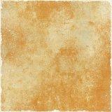tegels van de Vloer van 500X500mm de Rustieke Ceramische (A5181)