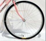 20 '' أصفر مدينة درّاجة/درّاجة مع مزلجة خلفيّة ([ش-كب068])