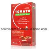 100% naturel Hot Sale plant de tomate la perte de poids pilules minceur