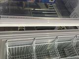 최신 판매 상단 열리는 유리제 문 가슴 어는 진열장 (SD-350가)