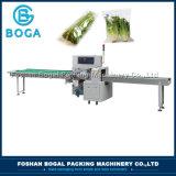 Precio servo semiautomático de la empaquetadora de las verduras frescas de la alta calidad