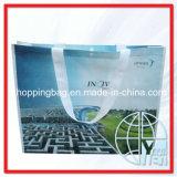 Sacos de Tote tecidos PP (ENV-PVB060)
