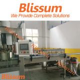 Plastic Bottle Sparking Water Processing Machine/Machinery/Line/Plant/Equipment/System