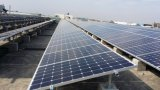 Panneau solaire de silicium monocristallin noir résistant du bâti 270W de PID