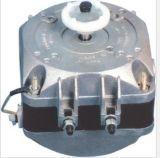 motore protetto frigorifero di 5W-34W Palo
