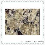 [شنس] صوّان [نترو] حجارة قرميد لأنّ جدار وأرضية البناية يرصف ([جلّو] فيرمونت)