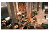 Nach Maß Hotel-Möbel-Hotel-Schlafzimmer-Luxuxset für Hotel-Projekt
