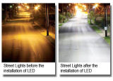 37W 세륨 승인되는 LED 가로등