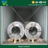 Lo spessore del calibro del TUFFO caldo 24 ha galvanizzato la bobina del bullone d'acciaio