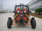 2 Sitz Racing Dune Buggy gehen Kart für Racing (Kd 250gka-2z