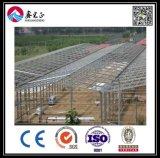 軽い鉄骨構造の倉庫の鉄骨構造の研修会(BYSS012203)