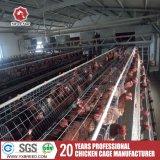 Las mejores jaulas de colocación de huevo del pollo de la venta para el diseño de la granja avícola
