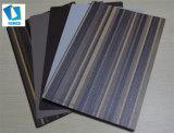 박판으로 만들어진 쉬운 가공 튼튼한 찰상 저항하는 방수 HPL는 중국 공장 Remica에서 널을 내화장치한다