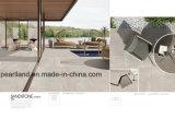 Dell'arenaria di disegno mattonelle di pavimento esterne della porcellana di spessore 2cm di slittamento non