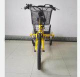 Bateria de lítio de triciclo com pequena carga