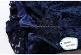 Alineada estupenda de la alineada del vestido de la falda de la cola larga del cordón puro europeo de la orden