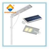 Indicatore luminoso di via Integrated solare di alta qualità 50W della Cina