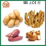 Automatische Kartoffel-Schale und Waschmaschine
