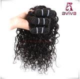 Le double brésilien d'armure de cheveu de Remy de Vierge noient l'armure d'enroulement de l'eau de cheveux humains