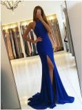 Nixe-formales Kleidblaues Spandex-Abend-Kleid Z206
