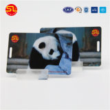 番号符号化を用いるCr80フルカラーの印刷PVC磁気カード