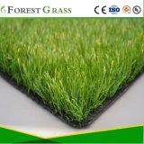 Дружественность к окружающей среде популярных искусственных травяных двор (МБ)