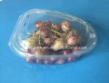 Contenitore impaccante dell'uva di plastica a gettare 750 grammi