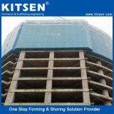 Het Beklimmen van Kitsen het ZelfSysteem van de Steiger