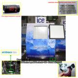 Coffre extérieur d'entreposage dans la glace avec le compresseur d'Aspera