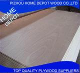 madera contrachapada comercial de la madera del álamo de 9m m 12m m 15m m 18m m con precio razonable