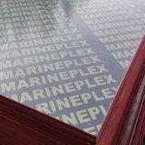 Contreplaqué Birch / Poplar / Contreplaqué Marine / Contreplaqué Commercial De Factory
