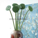 훈장을%s 로터스 PU 꽃의 Nanocasting Artificial Seedpod의 인공적인 로터스 잎
