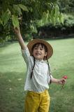 Phoebee Chemise mignonne en coton pour printemps / automne